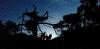 Ett litet äventyr är att beskåda solnedgången vid utsiktsplatsen och sedan vandra upp till toppen i skymningen, med pannlampa.