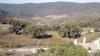 Från gården Buenavista har man utsikt över byn Colmenar och den mark som Enkvist just införskaffat och som en gång tillhört den kände Marqués de Larios.