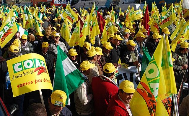 Lantbrukarna protesterar mot både låga inköpspriser och höjda kostnader med anledning av höjningen av minimilönen i Spanien. ARKIVBILD Foto: COAG/Wikimedia Commons