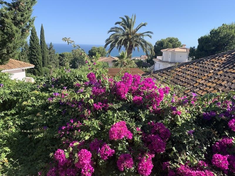 Enligt Colliers International är de privata säljarna av begagnade bostäder i Málagaprovinsen beredda att sälja för 10,4 procent lägre pris än i februari. Enligt Barnes Marbella ligger prisnedgångarna i lyxsegmentet på upp emot 20 procent.