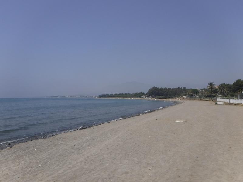Drogoperationen inträffade i juli på en strand i området Benamara i Estepona.