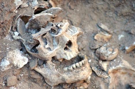 Det spanska historiska minnet är ofta skrämmande kort. Mer än 100 000 människor befinns ha hamnat i massgravar för mindre än 85 år sedan.