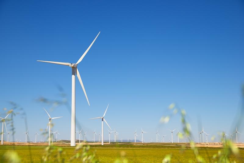 Andelen grön el i Spanien var 2020 den högsta sedan statistiken inleddes 2007. Störst andel stod vindenergin för, med nästan 22 procent av totalen.