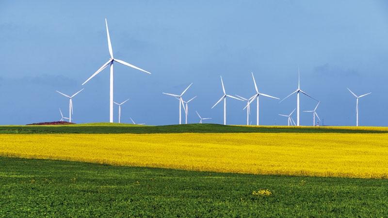 Satsningen på förnybar energi i Spanien har äntligen blivit lönsam. Priset för de gamla installationerna står dock konsumenterna fortfarande för, via elräkningen.