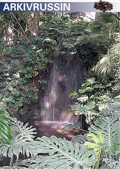 Rinnande vatten i form av bäckar och små vattenfall utgör ett viktigt inslag i trädgården och hjälper till att skapa ett harmoniskt och tropiskt lugn.