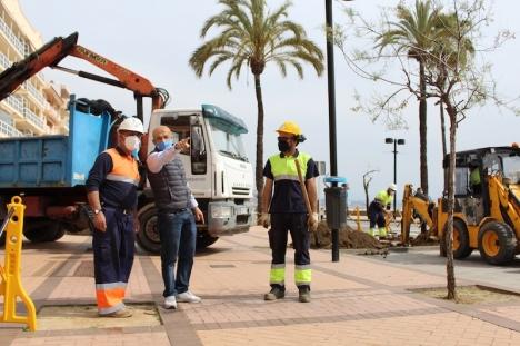 Fuengirolas strandpromenad får 455 nya palmer istället för träden som stått där hittills och som är i dåligt skick på grund av en obotlig sjukdom. Foto: Ayuntamiento de Fuengirola