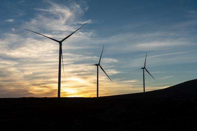 De första vindkraftverken vid det kanariska kustbandet ska uppföras på sydöstra Gran Canaria.
