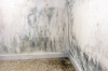 Ett vanligt problem är fuktskador i ytterväggar som vetter mot sluttningar, på grund av bristfällig isolering.