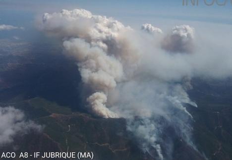 Rötutvecklingen vid Sierra Bermeja är enorm ett dygn efter att branden startade var lågorna fortfarande utom kontroll. Foto: Infoca