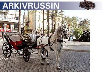 Ett bra sätt att uppleva Jerez är med häst och vagn i denna hästarnas huvudstad i Andalusien. En resa till Jerez bör för övrigt kombineras med ett stopp i den lilla staden Puerto Santa Maria, som är en livlig ort med många gamla intressanta byggnader att titta på. Foto: Eva Österlind