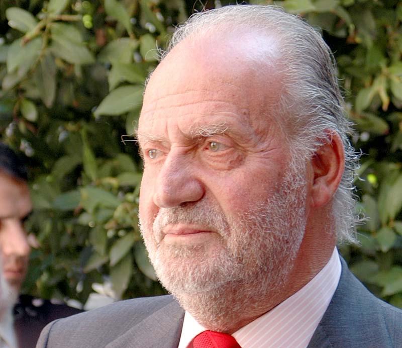 Kung Juan Carlos elefantjakter har lett till att han fråntagits titeln som hedersordförande i Världsnaturfonden WWF.