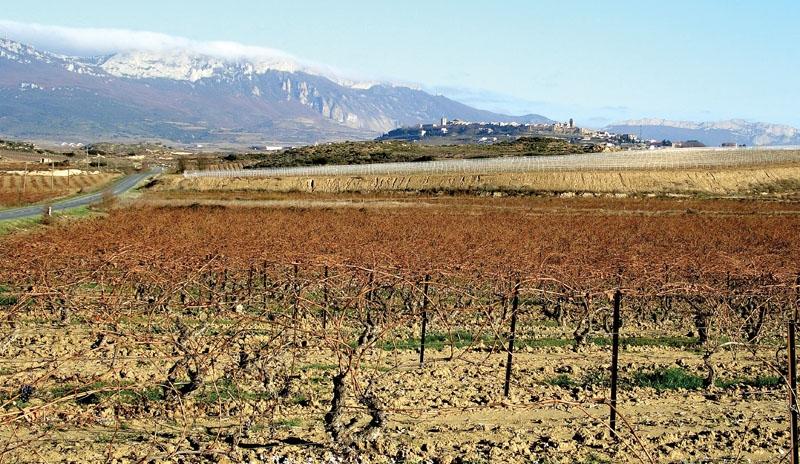 La Rioja ligger vid foten av de kantabriska bergen och även om det odlats vin överallt i Spanien sedan urminnes tider, var det här som produkten för första gången kommersialiserades.