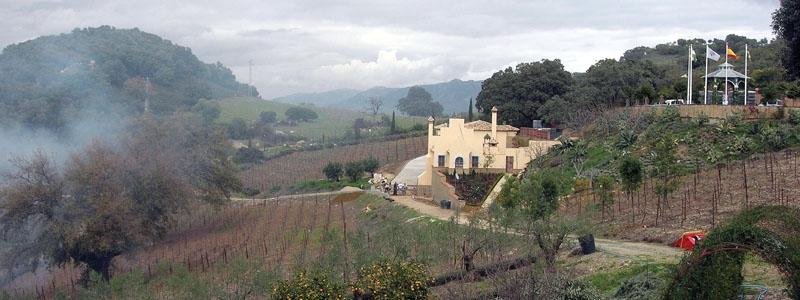 Skåningen Rickard Enkvist fick en idé under ett besök hos Marqués de Griñón  och idag odlar han prisbelönta viner i Málagabergen, intill byn Gaucín.